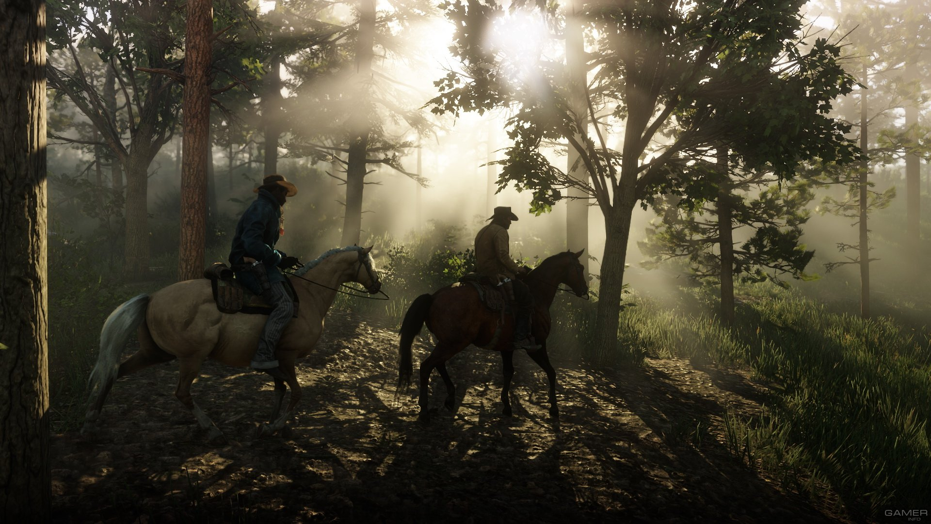 Игра PS4 Red Dead Redemption 2. Фото N2